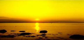 Sunrise 1982 PAZ